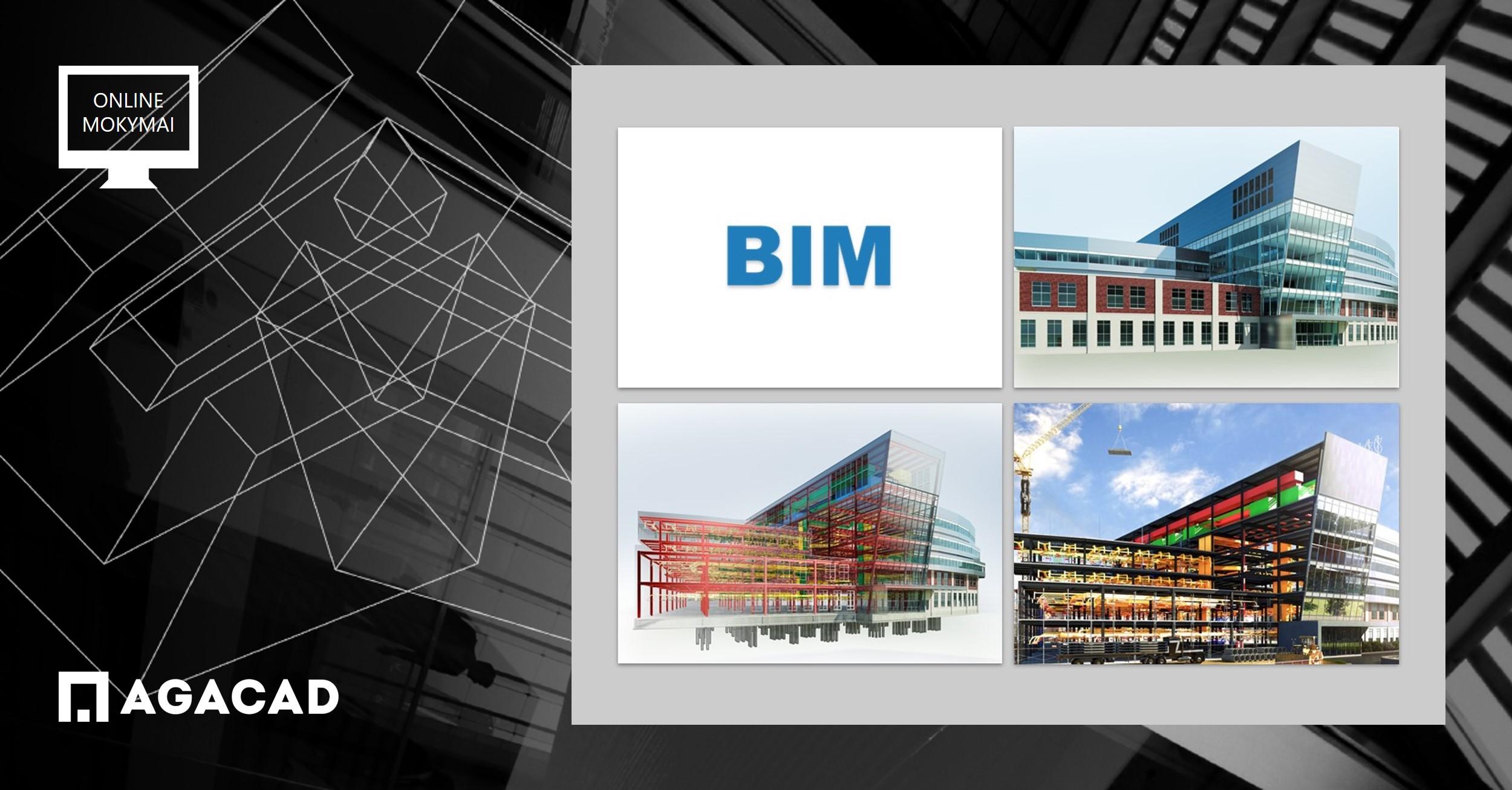 BIM baziniai mokymai, Building information modelling
